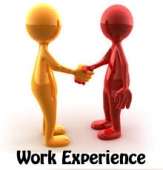 work-experience9